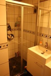 7 badkamer douchehoek